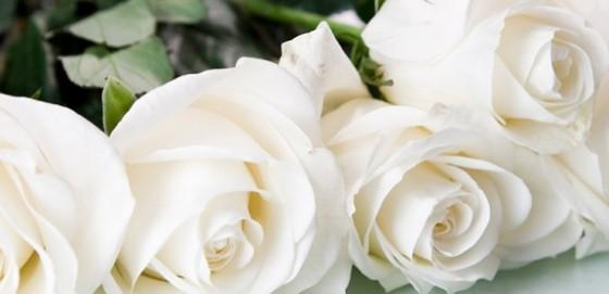 Choosing A Funeral Director
