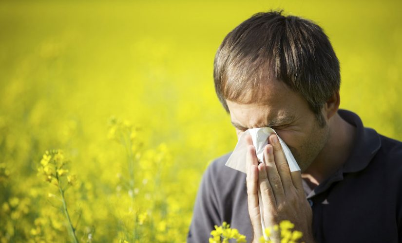 Don't Let Allergies Ruin Your Vacation